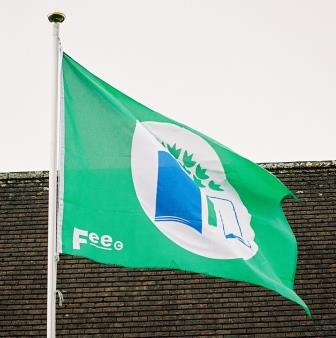 Proudly flying Green School Flags in Newbridge