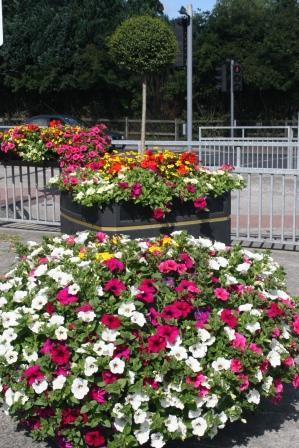 Newbridge in Bloom - Metre Square Planter Moorefield Road