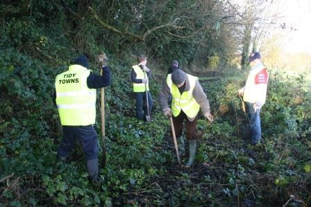 Planting Hedgerows